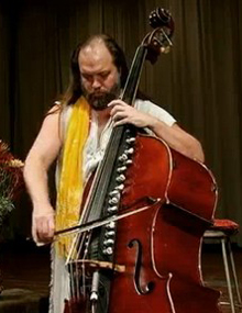 A double bass with a lot of strings.