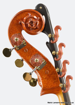 A double bass with a carved head of a flower.