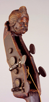 A double bass with the head of a head.