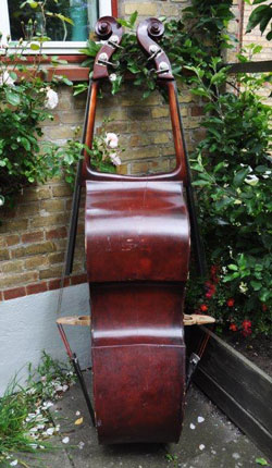 A double bass with a double neck.
