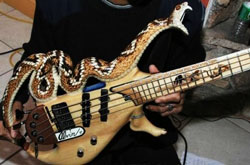 A bass guitar partly in the form of a snake.
