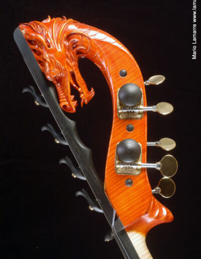 Contrabas drakenkop Lamario